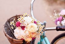 Bicycle&Vespa