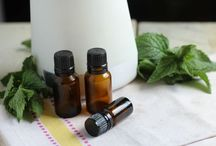Essential Oils to Support Wellness