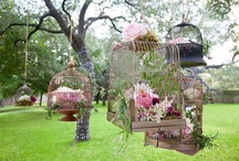 Bird Cage with Flowers