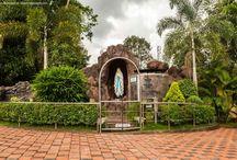 Churches & Altar