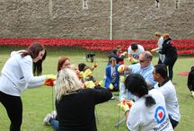 Poppy planting at the Tower of London / On 21 August 2014, some of our staff took part in planting poppies at the Tower of London for its unique WWI commemorative installation.