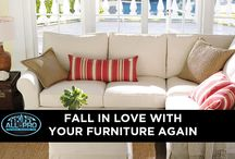 Upholstery Cleaning   / Professional Upholstery Cleaning