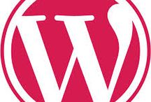 WordPress Development Company India / Sparx IT Solutions is a most successful WordPress development company from India. It also offers Custom WordPress  development services with 100% satisfaction guarantee in all over the world.