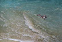 Beach and Seashore / Coastbeach seaside coastline sand seashoreThese are all words for the land beside or near to the sea.