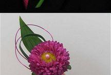 Floristic Tutorial
