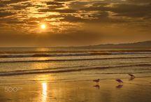 Playas / Playas