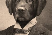 anthropomorfic dog paintings