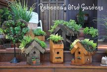 Bird Gardens ❤ / Birdhouses, Feeders, DIY Projects, Bird-Loving Plants / by Rebecca Nickols