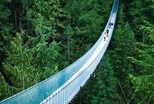 Suspension Bridges