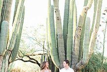 Alicia + Eddie: Engagement Inspo
