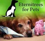 Pet Tributes & Loss / Honoring beloved pets who always leave too soon.