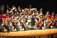 Música y Arte / El compromiso de VERUM con el arte va más allá. Es la única bodega en España que cuenta con su propia orquesta.