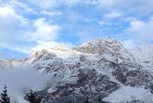 Cortina Winter