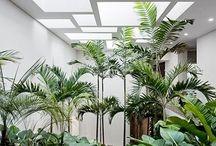 intérieur végétal