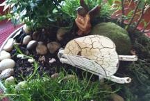 Fairy gardens / by Michaela