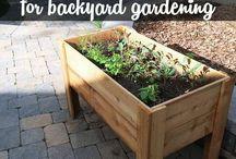 garden ideax