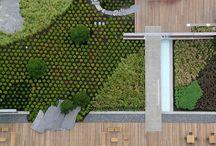 office roof garden