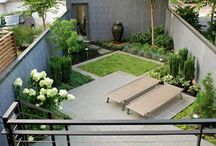 Landscape For Contemporary Architecture / Contemporary homes call for a different landscape aesthetic than the typical mix of products, plants and materials.  / by Decor Girl - Lisa M. Smith - Interior Design Factory, Ltd.