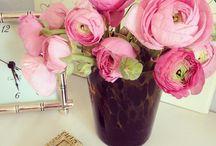 La Vie en Rose / Life in Pink  / by Kelsey Lauren Wright