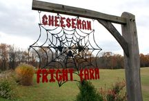 Fall Festivities / All things Fall in the beautiful Lawrence County