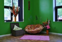 Pink Dog Parlor & Resort / Our amenities