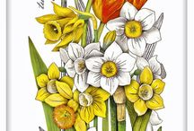 Easter Dish Towels / Decorate your kitchen for Easter and Spring!