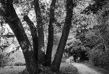 pics black & white