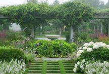 gardens / by Mary Fluaitt
