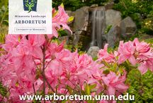 Blooms! Theme Gardens at the Arb