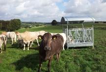 Landbouwwinkel.nl bord