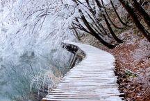 imagem inverno