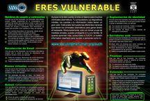 Seguridade informática