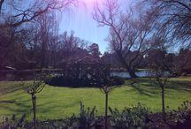Magic & nature / Gardens