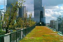 Green roof / green roof ideas