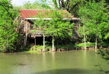 Arcana Chronicles Research / by KC