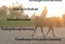 Horses♥