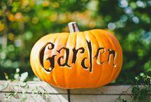Haunted Pumpkin Garden and Pumpkin Carving at NYBG  / Haunted Pumpkin Garden and Pumpkin Carving at NYBG the New York Botanical Garden