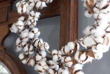Cotton Compendium / by New Mexico Farm & Livestock Bureau