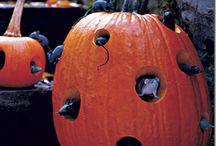 halloween pumpkins / by Aaron Fralick