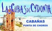 Cabañas Las Cubas Cydonia en punta de choros www.lascubasdecydonia.cl / Unicas cabañas en Punta De Choros con una ubicacion privilegiada a solo pasos del mar a 120 kilometros de la serena visit www.lascubasdecydonia.cl