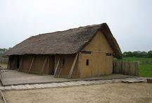Viking houses