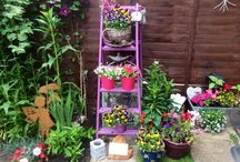 Garden Ideas / Budget ideas for gardens.