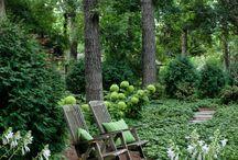 ogród dla Irenki