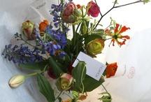 Pompon bouquets / Pompon creates unique flower bouquets form seasonal flowers