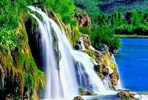 Adoro la creación de Dios..