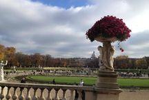 Paris / travel / by Sharon Falter