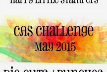 HLS May 2015 CAS Challenge