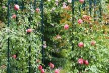 Garten Accessoires / Praktisches und Dekoratives für eine perfekte Gartensaison