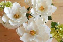 magnolia virág