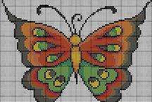 Fluturi - Butterflies